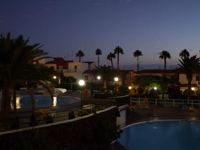 Kuva, jossa palmuja ja uima-altaita.