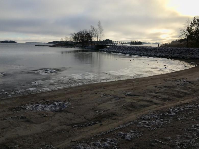 kuva, jossa merenranta