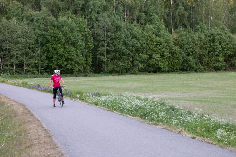 Kuva, jossa specialized bike