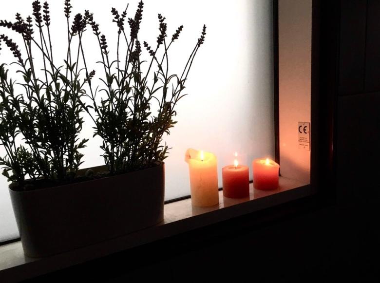 Kuva, jossa laventelipensas kukkaruukussa.