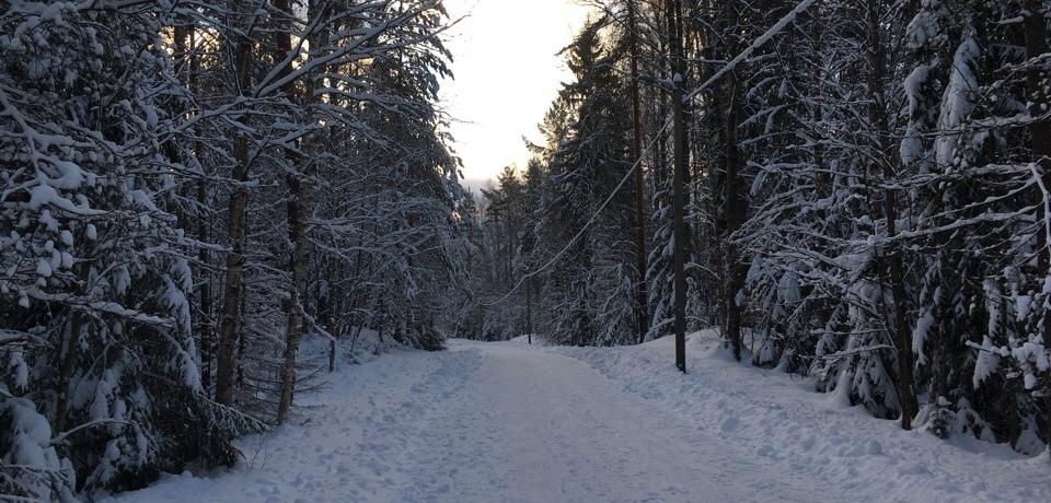Kuva jossa luminen polku.