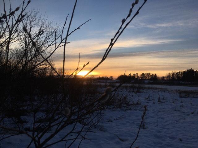 Kuva, jossa auringonlasku.