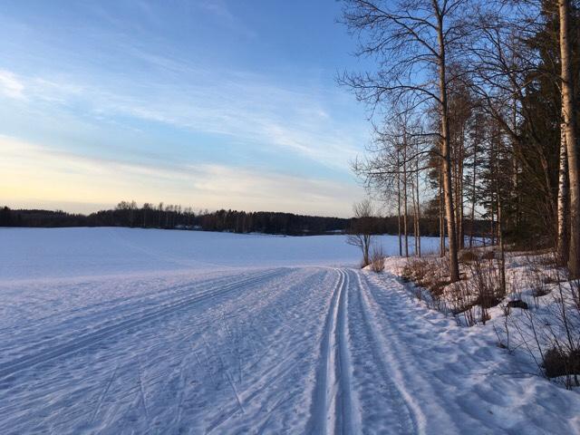 Kuva, jossa hiihtolatu pellolla.
