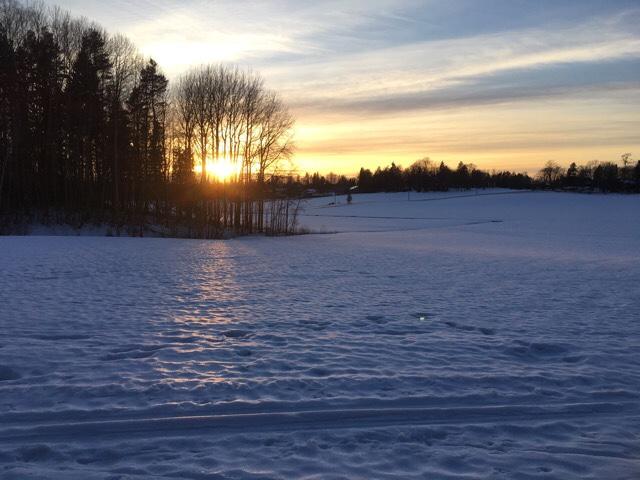 Kuva, jossa aurinko laskee puiden taakse.