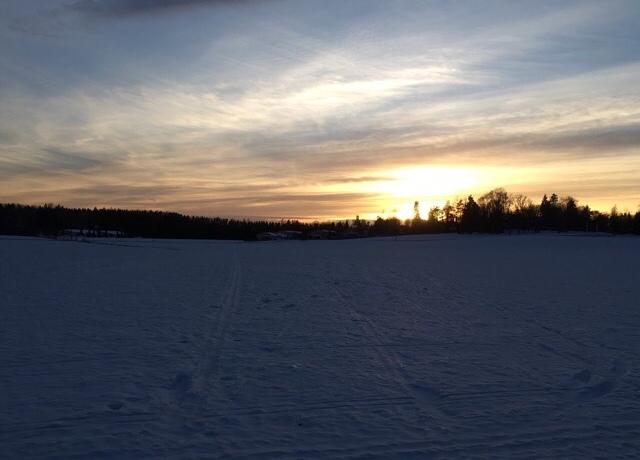 Kuva, jossa lunta, puita ja aurinko.