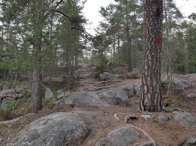 kallio