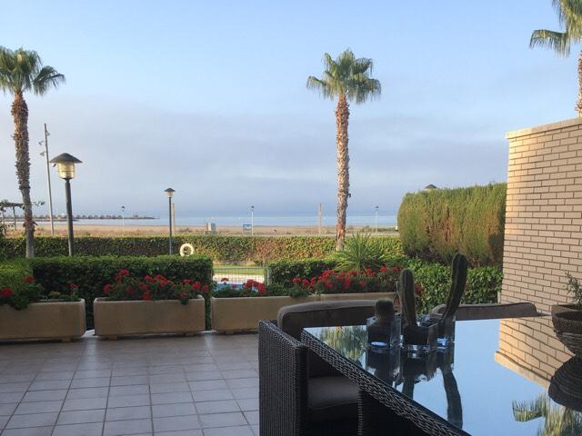 Kuva, jossa meri ja palmu