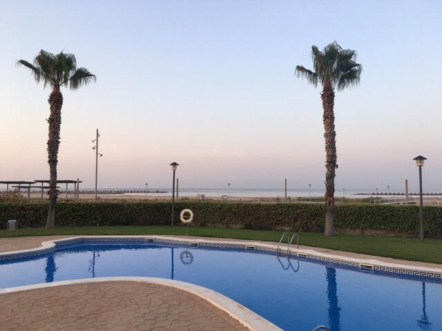 Kuva, jossa uima-allas ja palmuja.