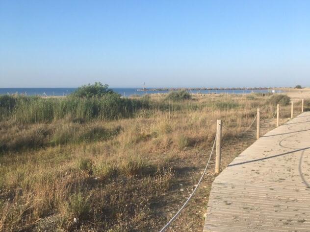 Kuva, jossa hiekkaranta