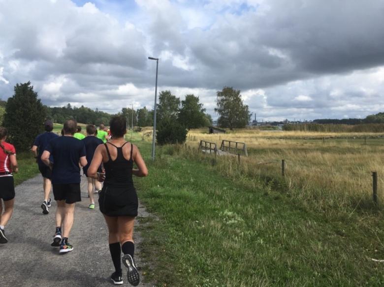 Kuva, jossa peltoa ja juoksijoita Ruissalossa.