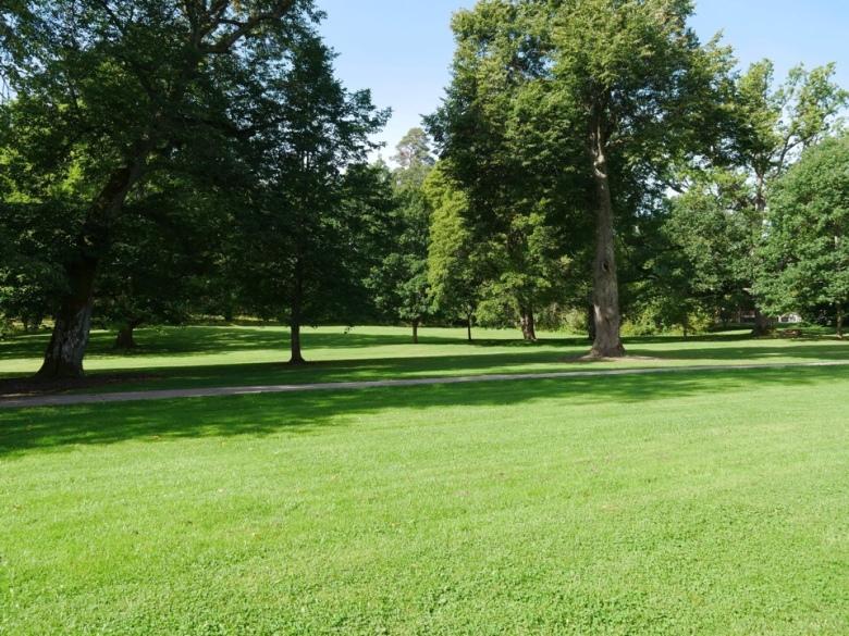 kuva, jossa puisto espoossa