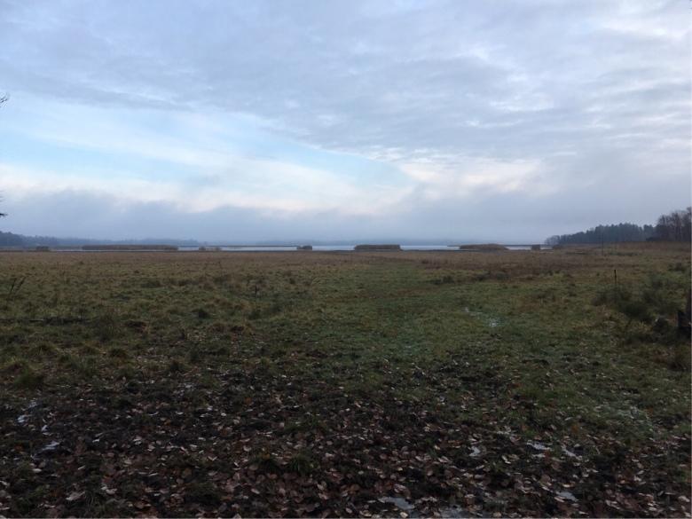laajalahti nature reserve espoo finland