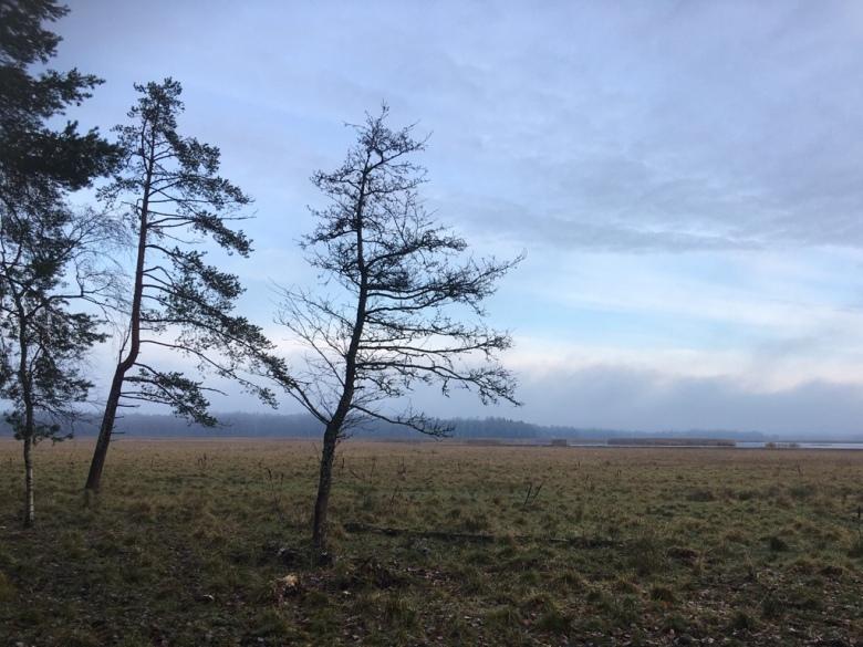 laajalahti nature reserve espoo