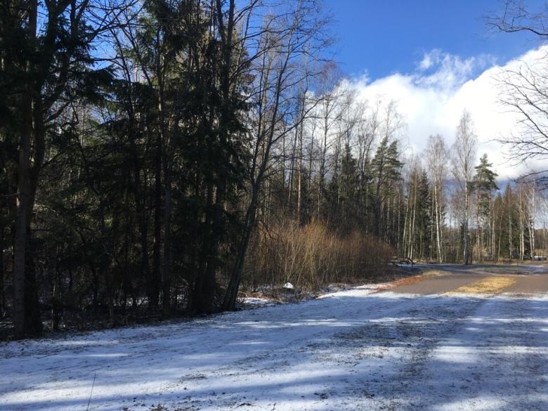 lumi maaliskuu leppavaaran urheilupuisto