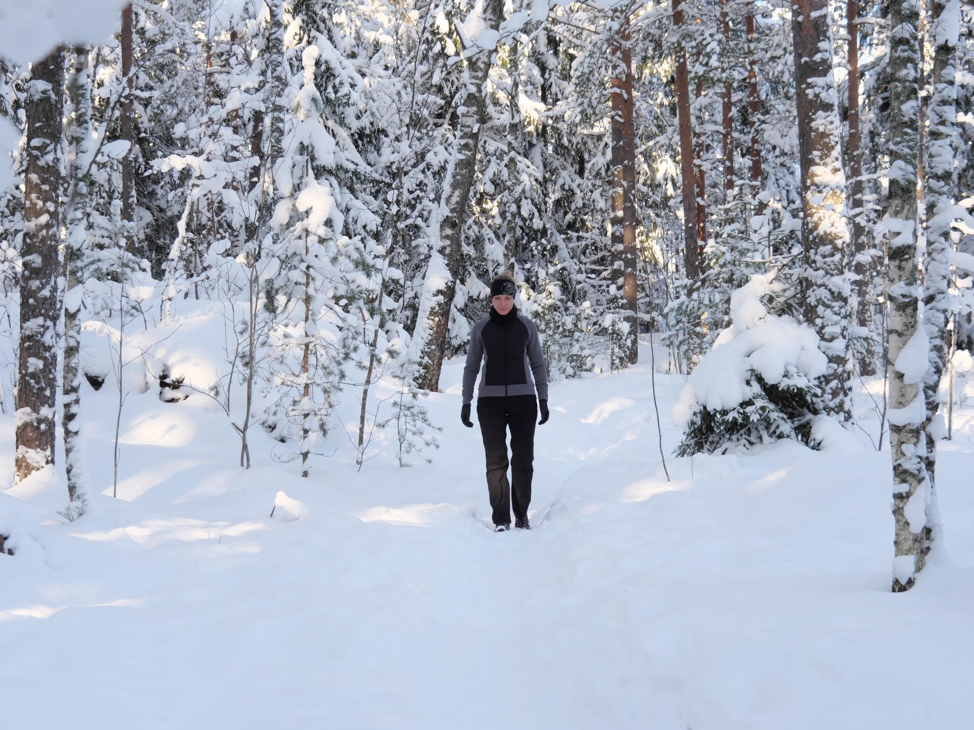 luminen metsa