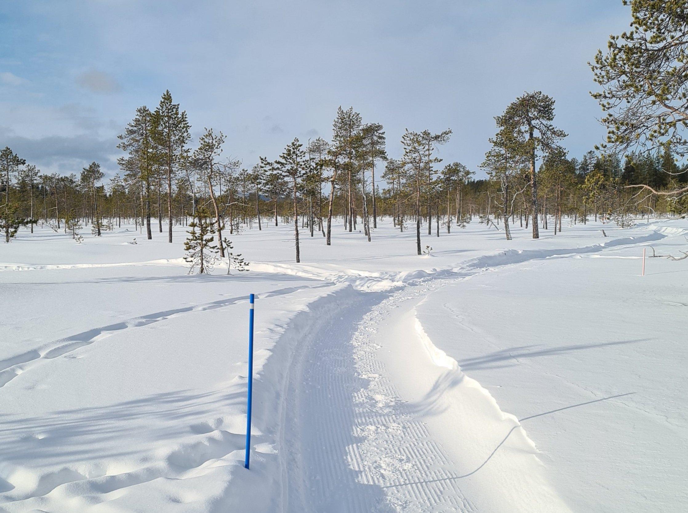 talvipyorailyreitti yllaksella