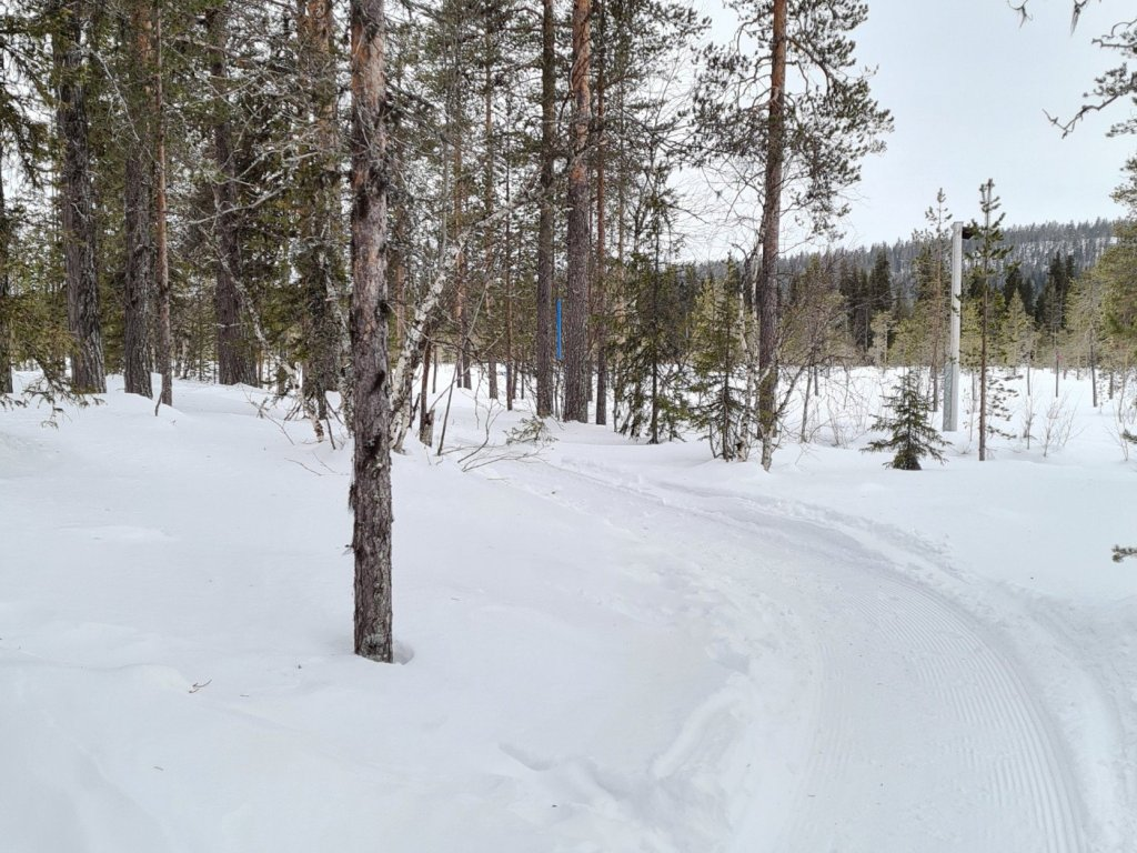 polkujuoksu yllas talvella