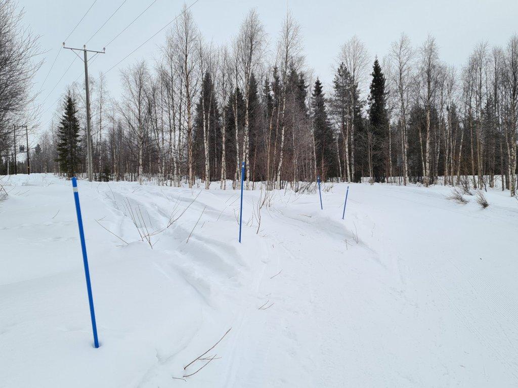 miten talvipolku on merkitty maastoon