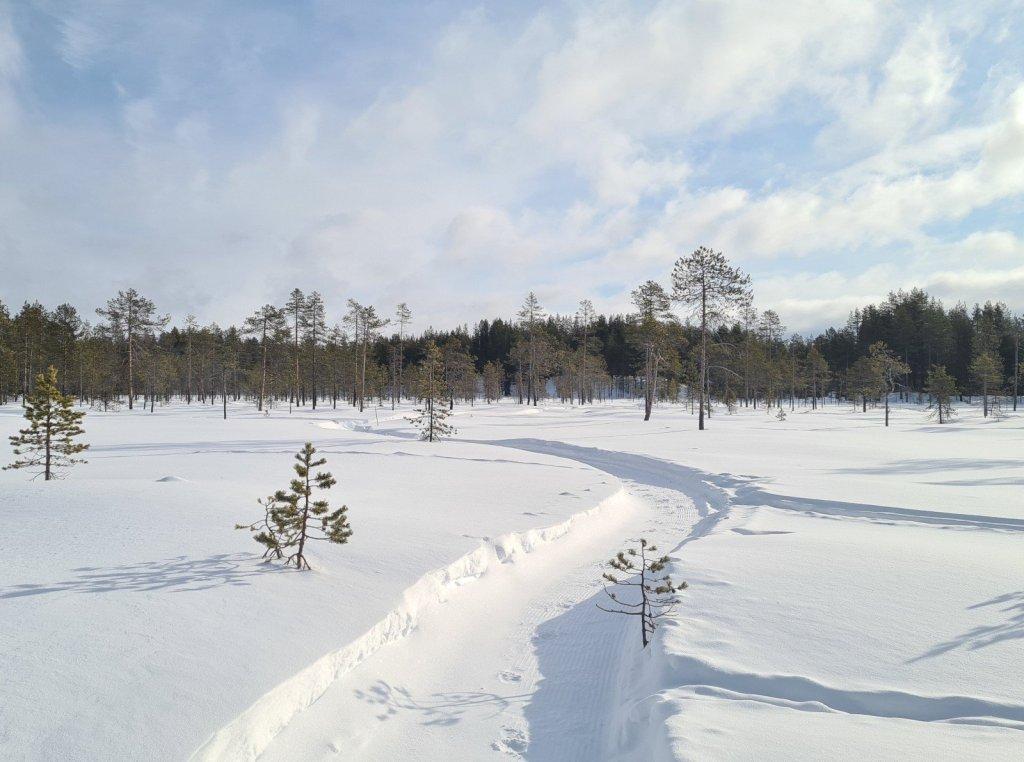 polkujuoksu talvella